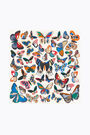 Ivory large butterflies scarf